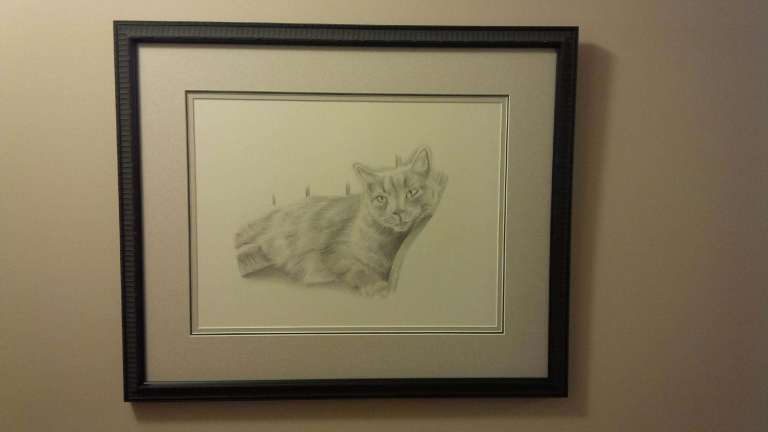 pippin cat drawing framed