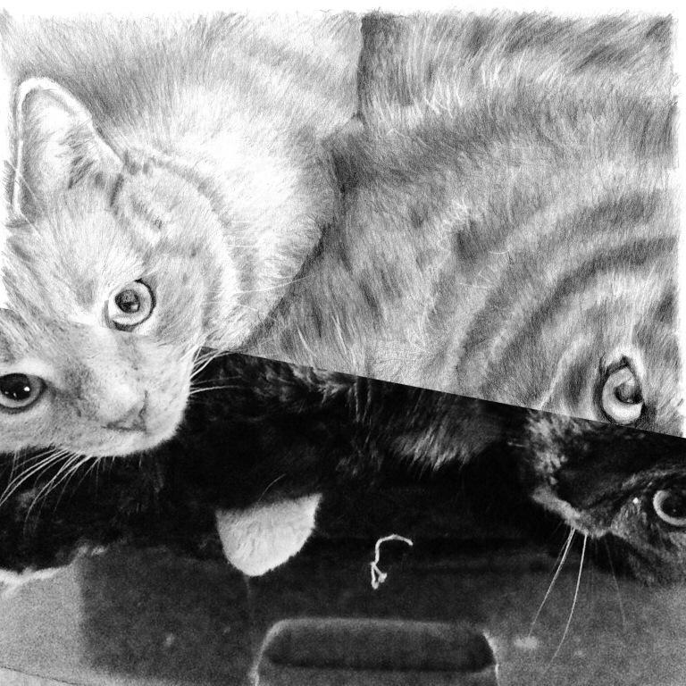 17 mother son cat drawing split