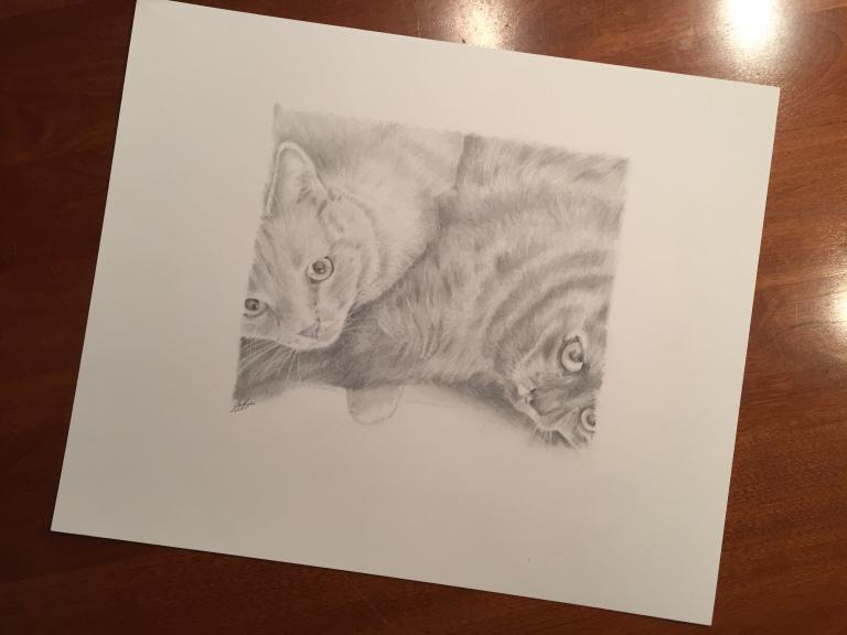 mother son cat drawing steve socha2