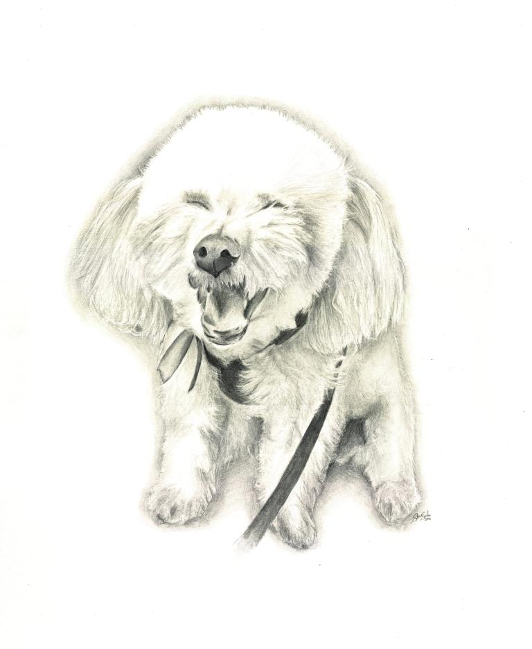 mocha-dog-drawing