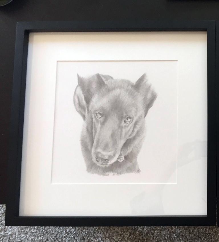 roggs dog drawing framed