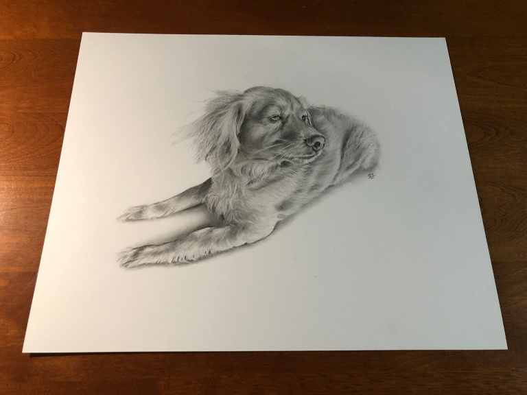louie dog drawing table