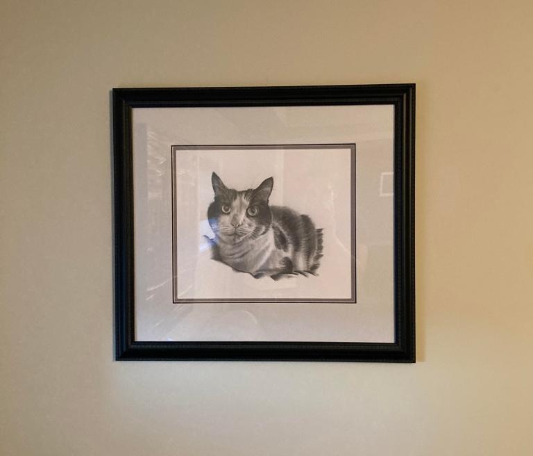 oreo framed 3